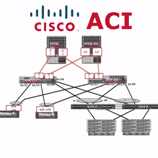 CISCO ACI - course on BurmeseHearts (1)